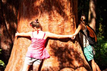 Zwei Kinder, die einen Baum umarmen