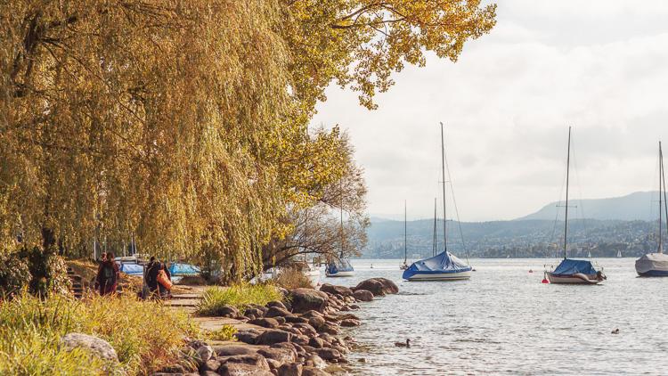 Seeuferweg im Herbst